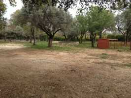 LAND FOR SALE IN BİTEZ BODRUM