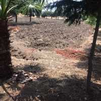 2425 sqm land for sale ın celaliye to build compound for apartments
