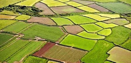 Tarım arazilerini miras ve satış bölemeyecek