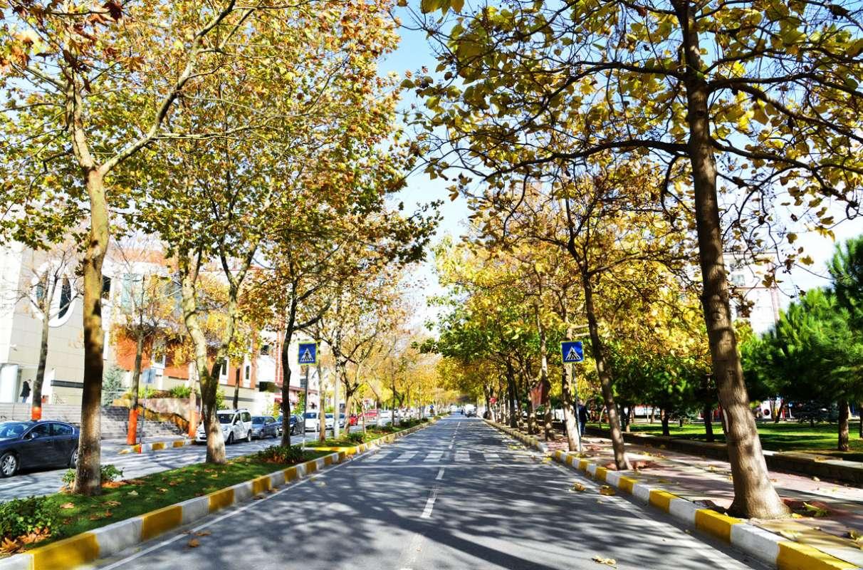 www.emlak34.com EMLAK34 - Beylikdüzü Tek Yetkili Satılık Kiralık Daire Villa Arsa İşyeri için Doğru Adrestesiniz.